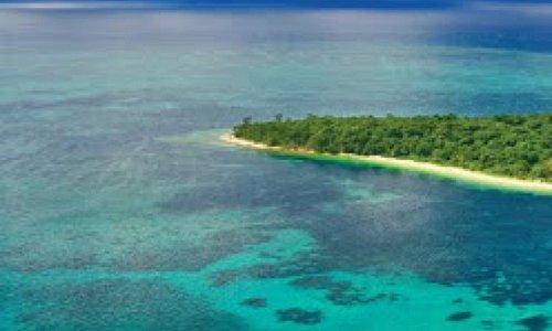 Peach Island love