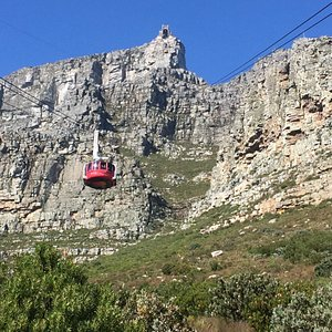 Cape Tours and Adventures