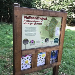 Information board and woodland views