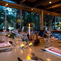 Premium dining with rainforest setting at Rainforest Restaurant & Lounge Bar