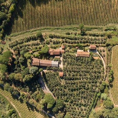Azienda Agricola Wandanna, veduta aerea