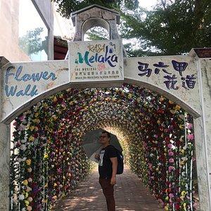 The amazing view of flower walk at rasa Melaka and jambatan kg Morten.