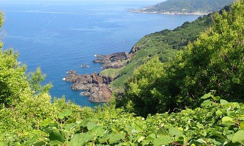 海だけでなく、自然豊かな山の風景も素晴らしいです。