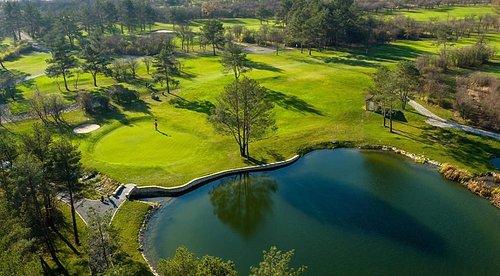 Najbardziej zielone pole golfowe w Polsce