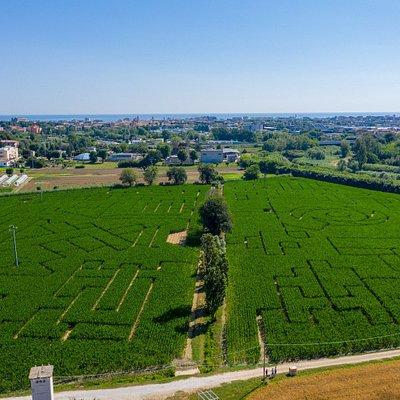 Un enorme campo di gioco, grande come 6 campi di calcio, a 2 km dal mare e dalla spiaggia di Senigallia