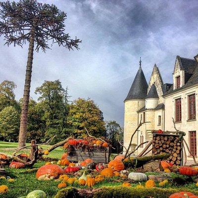 Parc du Château de Cangé à l'automne ... Saint -Avertin (Indre et Loire)