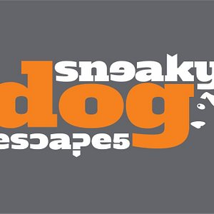 Sneaky Dog Escapes provides fun, exciting entertainment using cutting edge virtual reality technology and imaginative, sneaky escape room puzzles for a fully immersive, memorable experience.