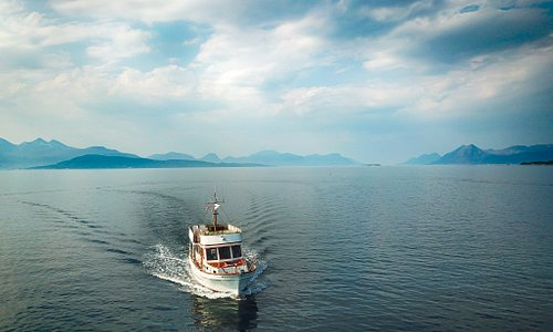 Cruise in the Hardangerfjord can be one of the best experiences while in the region.