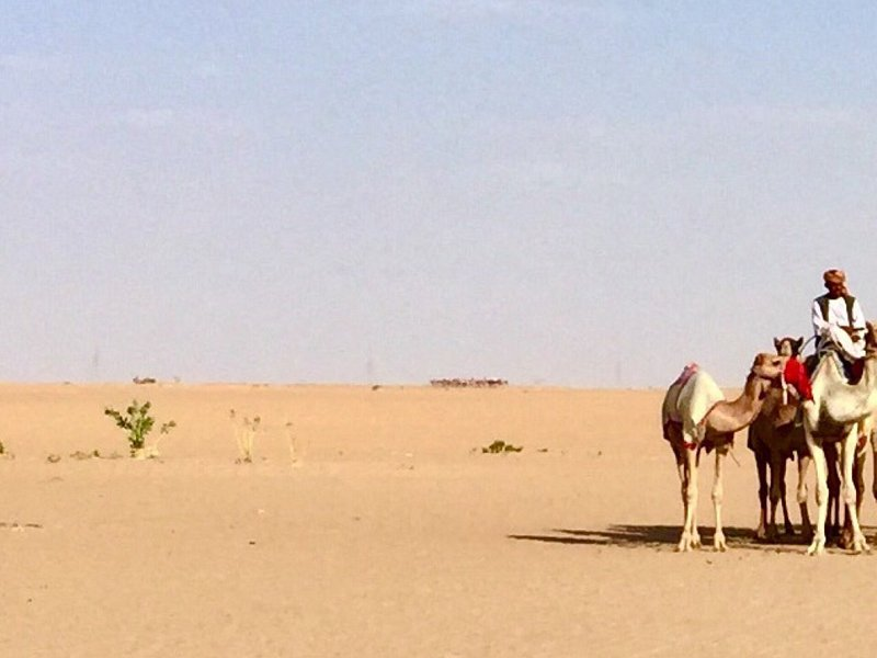 Tours in one of the biggest sand deserts in the world