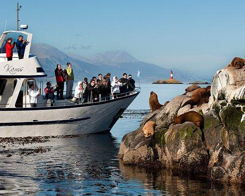 Avistajes muy cercanos. Aquí estamos visitando la Isla de los Lobos y a lo lejos podemos ver nuestra próxima parada, el faro Les Eclaireurs!