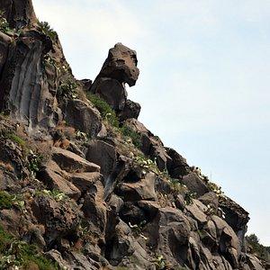 La testa di cavallo vista dal mare di Filicudi