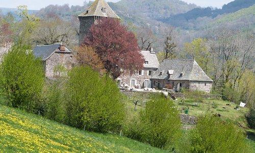 vue du château au printemps