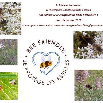 BEE FRIENDLY certification pour la protection des pollinisateurs. Les vignobles Yves Delol sont certifiés BEE FRIENDLY pour la récolte 2019. Cela complète notre engagement en conversion AGRICULTURE BIOLOGIQUE entamé en avril 2018.
