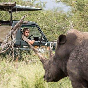 Full day safari to Hluhluwe Imfolozi