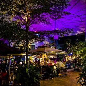 Enjoy your evening at Eden Garden.