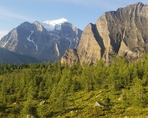 Mount Temple from the pass.