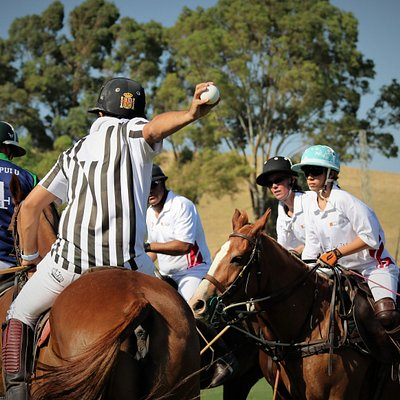 At Iridike Polo Club, we are playing polo all year long and orgazing tournament throughout the year