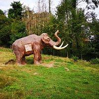 Vous voulez apprendre à chasser comme un homme préhistorique? Quoi de mieux qu'une cible préhistorique?