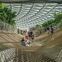 Manulife Sky Nets - Walking