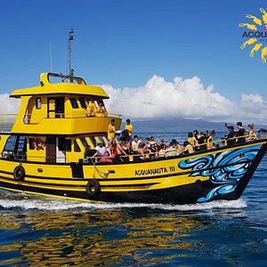 Está é nossa embarcação Acquanauta III, habilitada e com todos equipamentos de salvatagem obrigatórios, priorizando sempre a segurança de nossos passageiros. |Conheça um novo mundo, MERGULHE !!!.  #preserveosoceanos