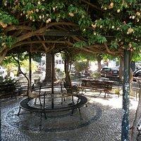 Jardim Público de Sesimbra