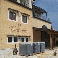 Винодельня Cattunar принимает новую партию бутылок.