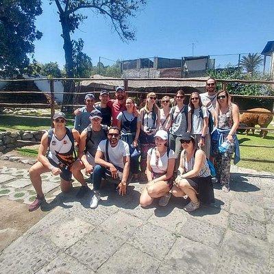 Visiting Alpaca World