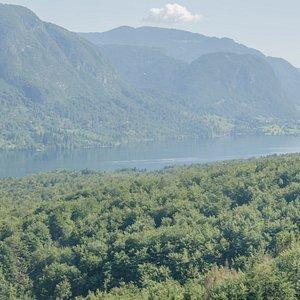 Widok z wagonika kolejki na jezioro Bohinj