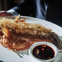 Deep-fried Four-eyed Sleeper, Spring Onion, Premium Soy Sauce  at Canton Bistro