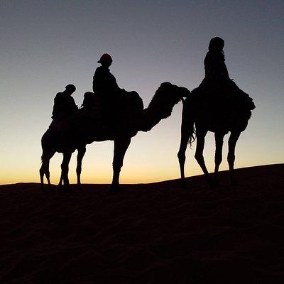 Passeio de camelo no Sahara