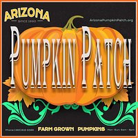 Best Pumpkin Patch