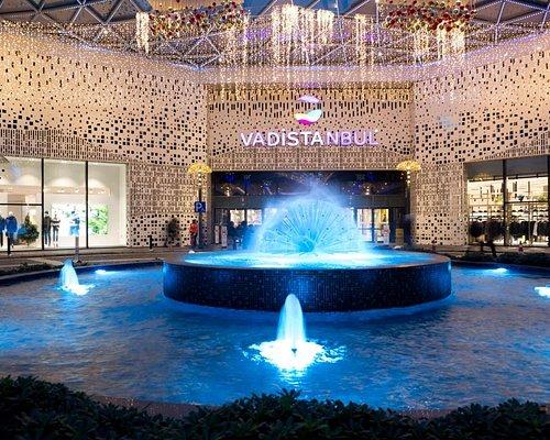 Vadistanbul 270'i aşkın mağazası, gastronomi alanındaki geniş yelpazesi, eğlence ve sinema alanlarıyla İstanbulluların yeni buluşma ve sosyalleşme noktası. Orman manzaralı kafe ve restoranlarının yanı sıra 760 m. uzunluğundaki açık hava alışveriş caddesiyle Vadistanbul, misafirlerine keyifli bir deneyim yaşatıyor.