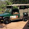Southern Kruger Safaris