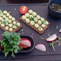 Rye bread with avocado mousse, mix of sprouts and pumpkin seeds.
