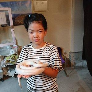 娘も最初なビビりながら手のひらにのせて貰いました。