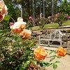 TM Botanic Gardens