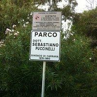 Particolare Parco Puccinellli Marina di Carrara