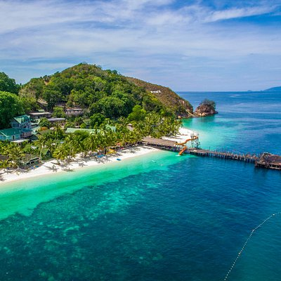 OrcaNation - Rawa has one of the healthiest housereefs in Malaysia. Located in the Sultak Iskandar Marine Park, which is one reason why the marine life here is abundant and diverse.