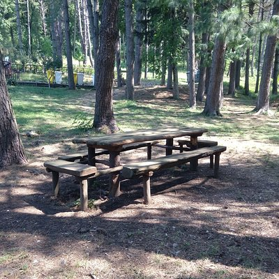 Area pic-nic all'interno del bosco