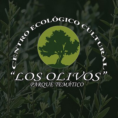 Centro Ecológico Cultural Los Olivos: más de 1000 olivos cultivados por métodos ecológicos; almazara y la única cadena de envasado de aceitunas de Canarias; granja-escuela; más de 70 variedades de animales; cafetería; mini-karting; parque infantil; airsoft; zonas para celebraciones y mucho más.