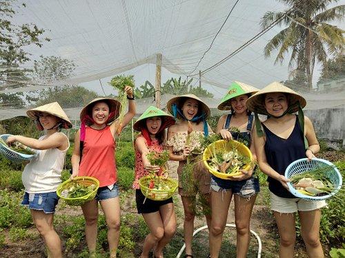 full basket after harvesting