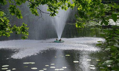 Rikligt med vatten i parken