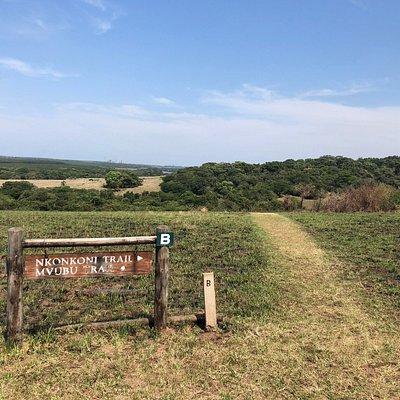 Un réserve naturelle à parcourir a pied tôt le matin pour observer les oiseaux et avec chance apercevoir un crocodile, des zebres et antilopes. Splendide papillon. 25 Rand l'entrée. 15 pour les enfants. Wild carte non acceptée.