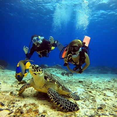 Disfruta la belleza del mar con Nirvana Dive shop