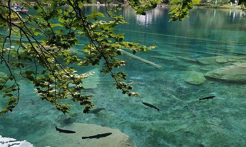 Озеро невероятного цвета