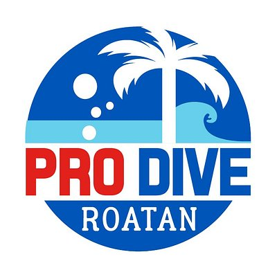 Quality Time Divers is now Pro Dive Roatan. Same great service and fun you've come to love, just under a new name!