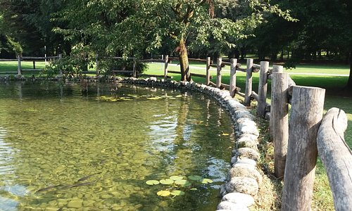 Il laghetto del parco