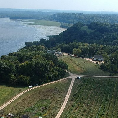 Located at the widest part of the Mississippi river - Wide River Winery!