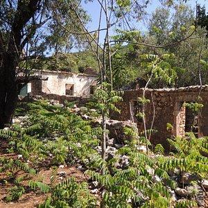 Old Vlachata ruins