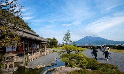 仙巌園から桜島の背景